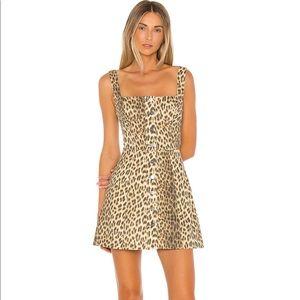 Cheetah skater skirt dress